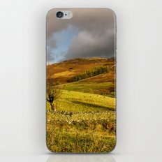 Gowbarrow Fell, Lake District iPhone & iPod Skin