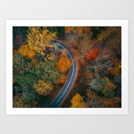 ColorFall Road Art Print