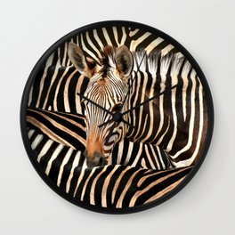 Portrait Of A Zebra - Modern Wildlife Photography Art Wall Clock