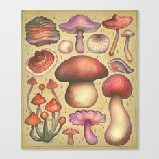 Regnum fungorum Canvas Print