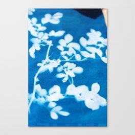 Botanical Sunprint Canvas Print