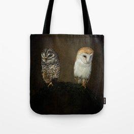 Barn And Tawny Owl Tote Bag