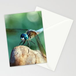 Dragonfly Resting Stationery Cards
