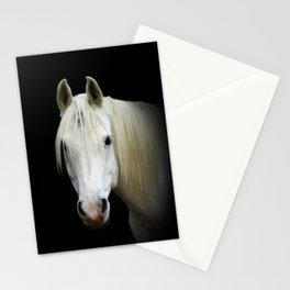 The white Arabian  Stationery Cards