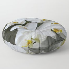 Immaculate Floor Pillow