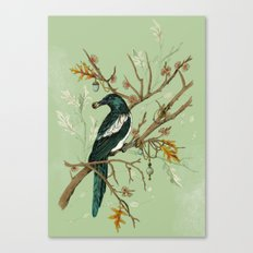 Magpie Jewels Canvas Print