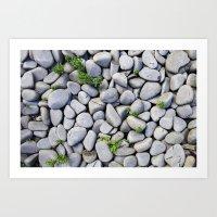 Sea Stones - Gray Rocks, Texture, Pattern Art Print