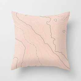 Maps Maps Maps Throw Pillow