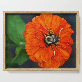Orange Bumble Bee Flower Photography Serving Tray
