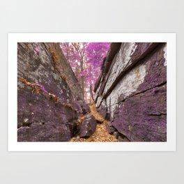 Gettysburg Grotto - Lavender Fantasy Art Print