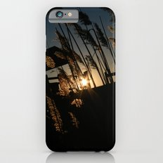 Sunset in the Fall iPhone 6s Slim Case