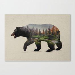 The North American Black Bear Canvas Print