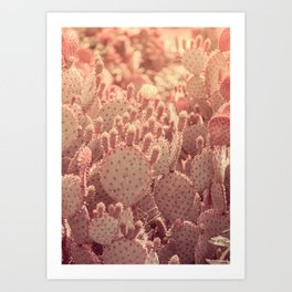 Rose Gold Cactus Art Print