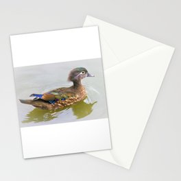 Female Beauty - Wood Duck by Reay of Light Photography Stationery Cards