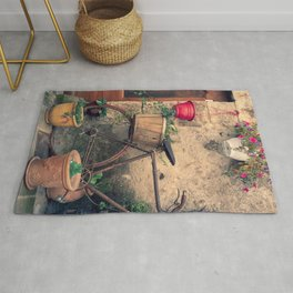 Vintage Bicycle Used As A Flower Pot, Provence Rug