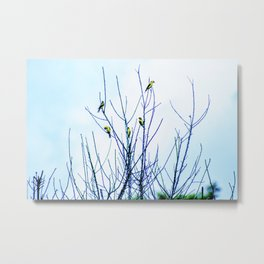Goldfinches in a Tree Metal Print