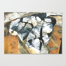 Bellambi Rocks Canvas Print