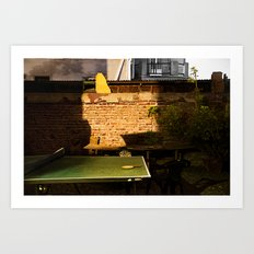 Low Light Backyard#2 Art Print