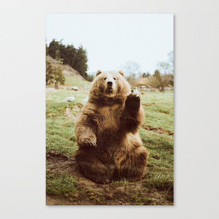 Hi Bear Leinwanddruck