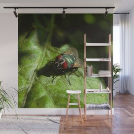 But A Fly Wall Mural