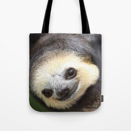 Three-toed sloth at Green Heritage Fund Suriname Tote Bag