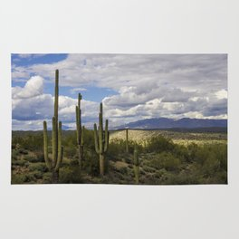 A Sonoran Winter Day Rug