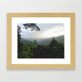 Loas Jungle Framed Art Print