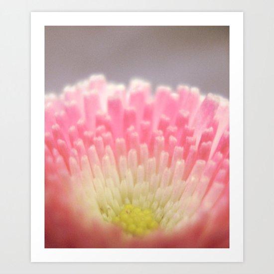 Winter flower. Art Print