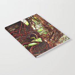 Intertwined Notebook