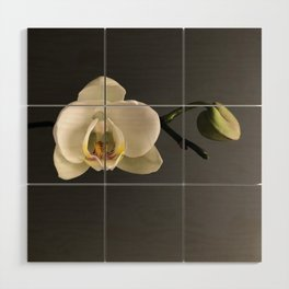 White Orchid by Teresa Thompson Wood Wall Art