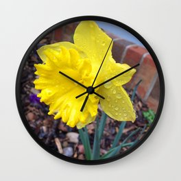 Drops on the Daffodils Wall Clock