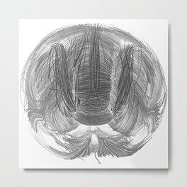 Brain Tractography II Metal Print