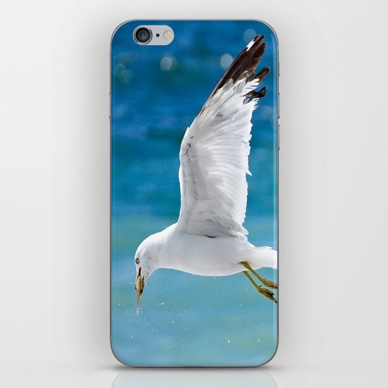 Gull with Fish iPhone & iPod Skin