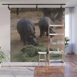 hippos Wall Mural