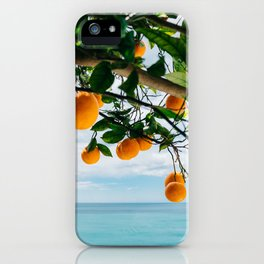 Amalfi Coast Oranges IV iPhone Case