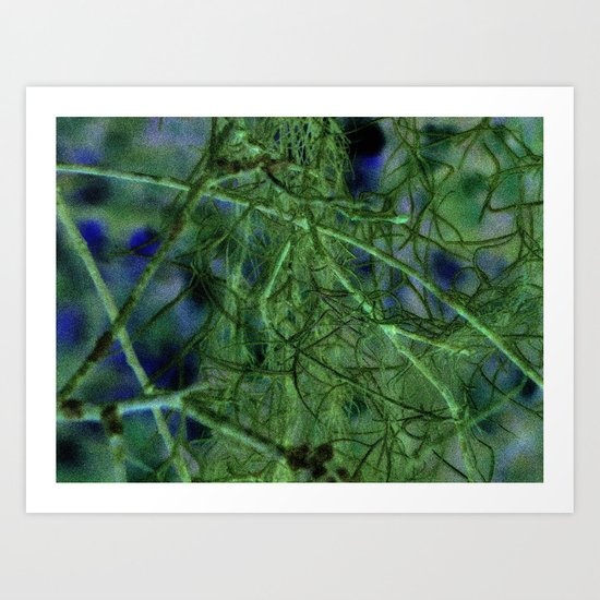 Nature's Lace Curtain Art Print