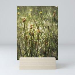 Little Weeds Mini Art Print