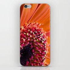 Orange Germini. iPhone & iPod Skin