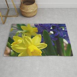 Spring daffodils and hyacinth Rug