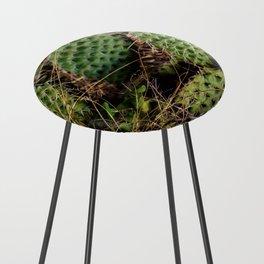Cactus Counter Stool
