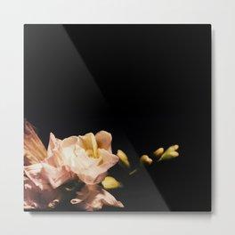 Nyx Series Frame D Metal Print