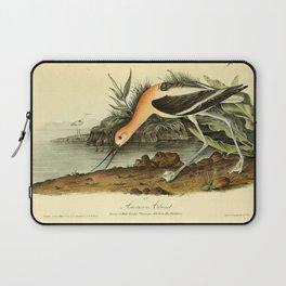American Avocet Laptop Sleeve
