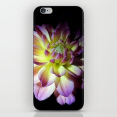 Blooming in the Darkness iPhone & iPod Skin