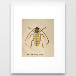 Urban Bug #3 Framed Art Print