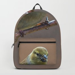 Early Spring Goldfinch Backpack