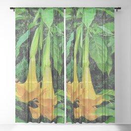 TROPICAL GOLDEN ANGEL TRUMPET FLOWERS Sheer Curtain