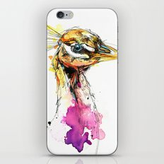 Sunset Peacock iPhone & iPod Skin