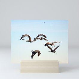 V-Sandhill Cranes Mini Art Print