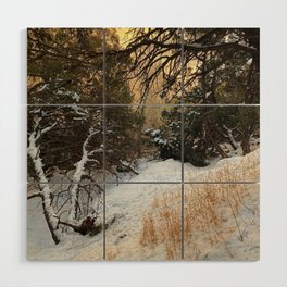 Carson Forest  Wood Wall Art