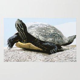 water turtle Rug